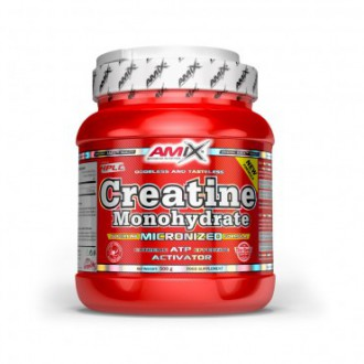 Amix Creatine monohydrate 500g  powder