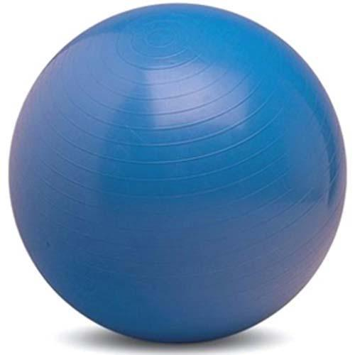 Formerfit Gymnastic Ball 55 cm (do 165 cm) - modrá